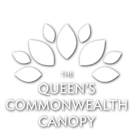 The Queens Commonwealth Canopy